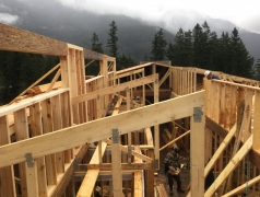 Dec 17 - Roof framing