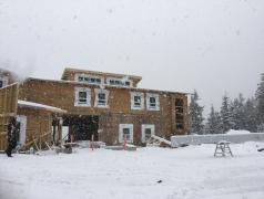 Feb 22 - Snow