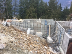 Feb 13 - step walls