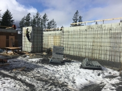Feb 26 - upper basment rebar