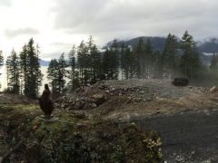 Panoramic_View_Feb2015