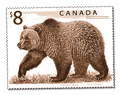 grizzly2-stamp